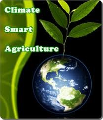 Climate Smart Agriculture Logo