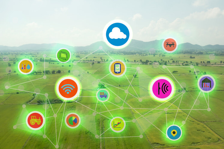 Agriculture-Farming vendors solutions - IoT Farming Technology